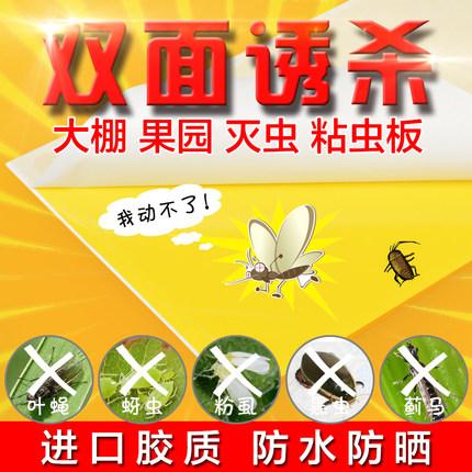 粘虫黄板|诱虫黄板